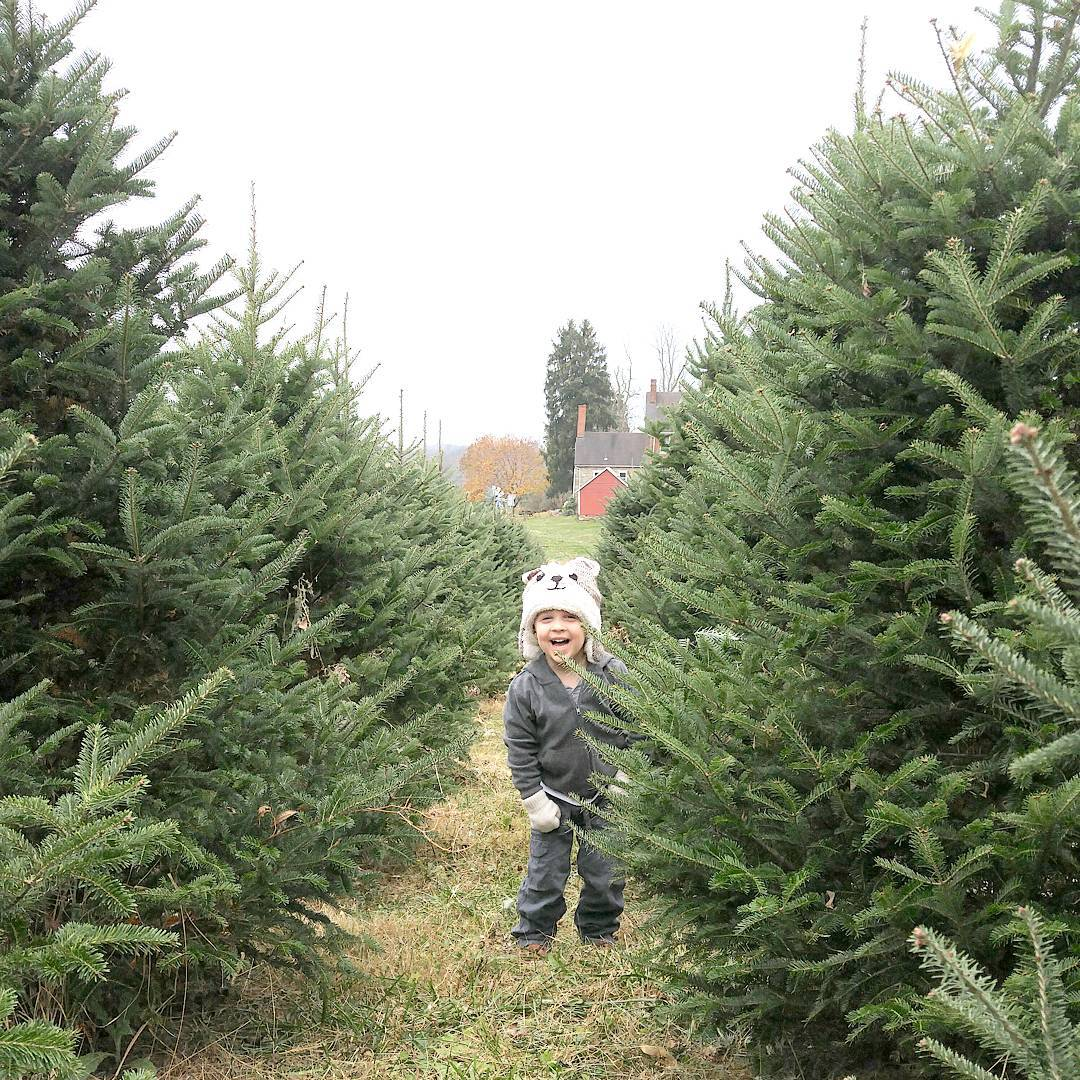 Going to the Christmas tree farm with this big guyhellip