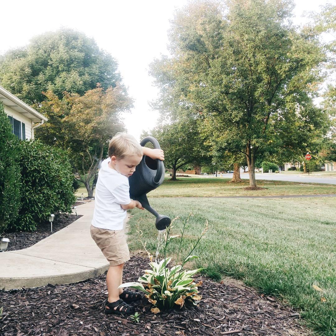 Such a good little helper  kid kiddo flowers hostashellip