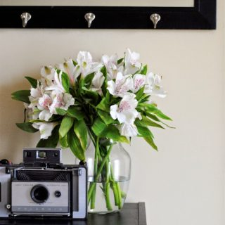 Simple Fix: Using Flowers to Brighten a Home