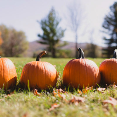 25 Ways to Enjoy Fall With Your Family