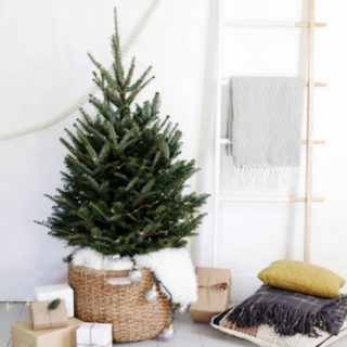 20 Christmas Tree Decoration Ideas