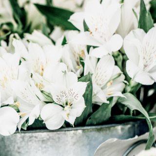 Simple Steps for a Beautiful Flower Arrangement