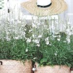 15 Simple Ways to Add Spring to a Home