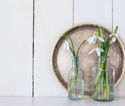 White spring flowers snowdrops in vintage glass bottles on white  barn wall background, cottage interior decor