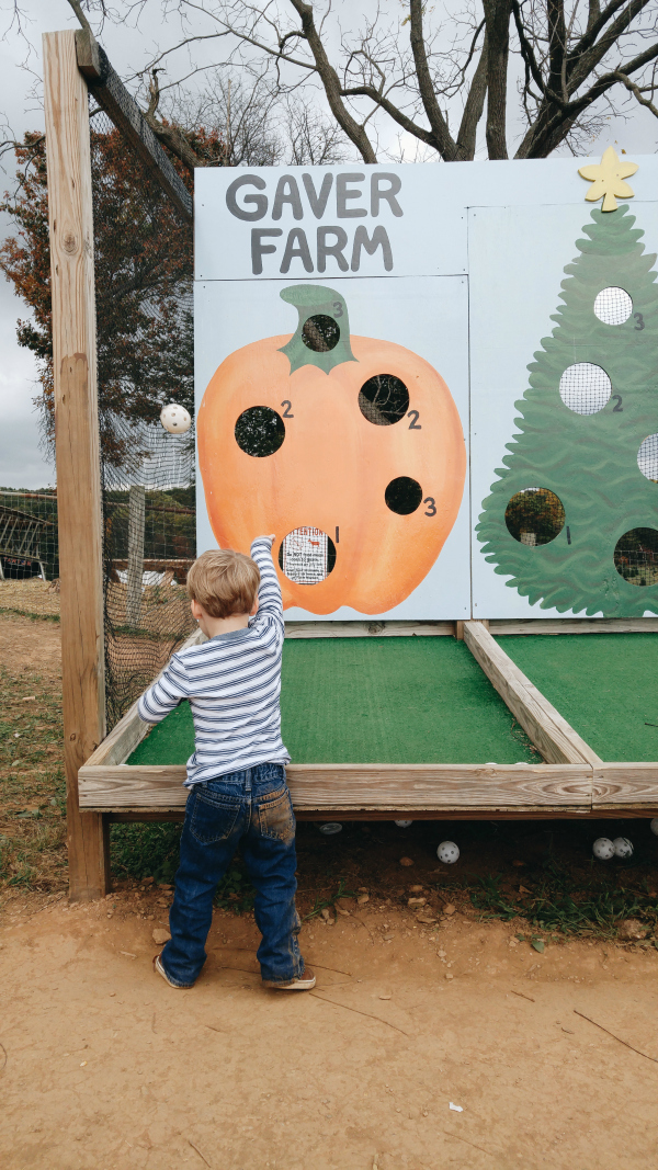 Throwing balls at the pumpkin patch