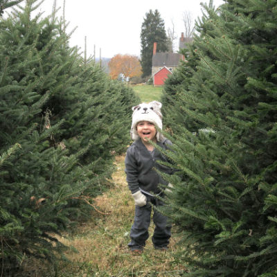15 Kid-Friendly Holiday Traditions