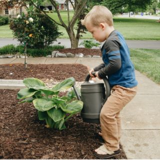 10 Ways to Get Kids Excited About Gardening